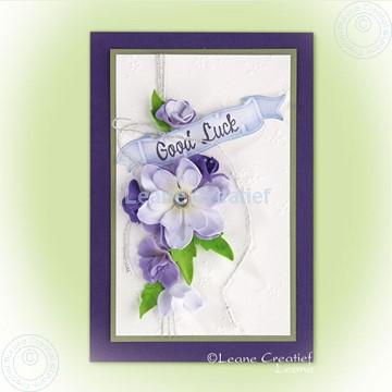 Image de Foam flowers