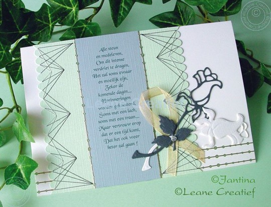 Image sur Roses black grey