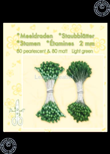 Afbeelding van Meeldraden ± 80 matt & 80 light green