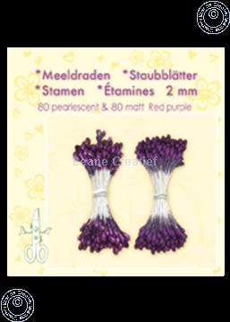 Afbeeldingen van Meeldraden ± 80 matt & 80 red purple