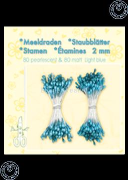 Afbeeldingen van Meeldraden ± 80 matt & 80 light blue