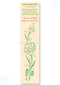 Picture of Border Carnation