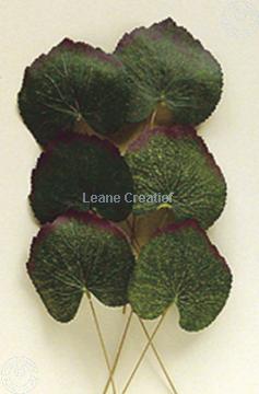 """Afbeeldingen van LeCreaDesign® Bladgroen pakket """"begonia"""""""