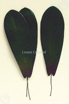 """Afbeeldingen van LeCreaDesign® Bladgroen pakket """"phalaenopsis"""""""