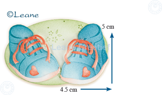 Picture of Lea'bilitie Baby shoes