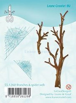 Picture of Branches & spider web