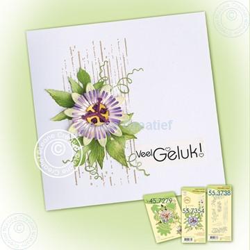 Afbeeldingen van Simple card with Passionflower